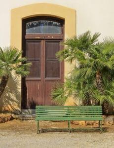 Mediterranean Fan palms framing entry doorway